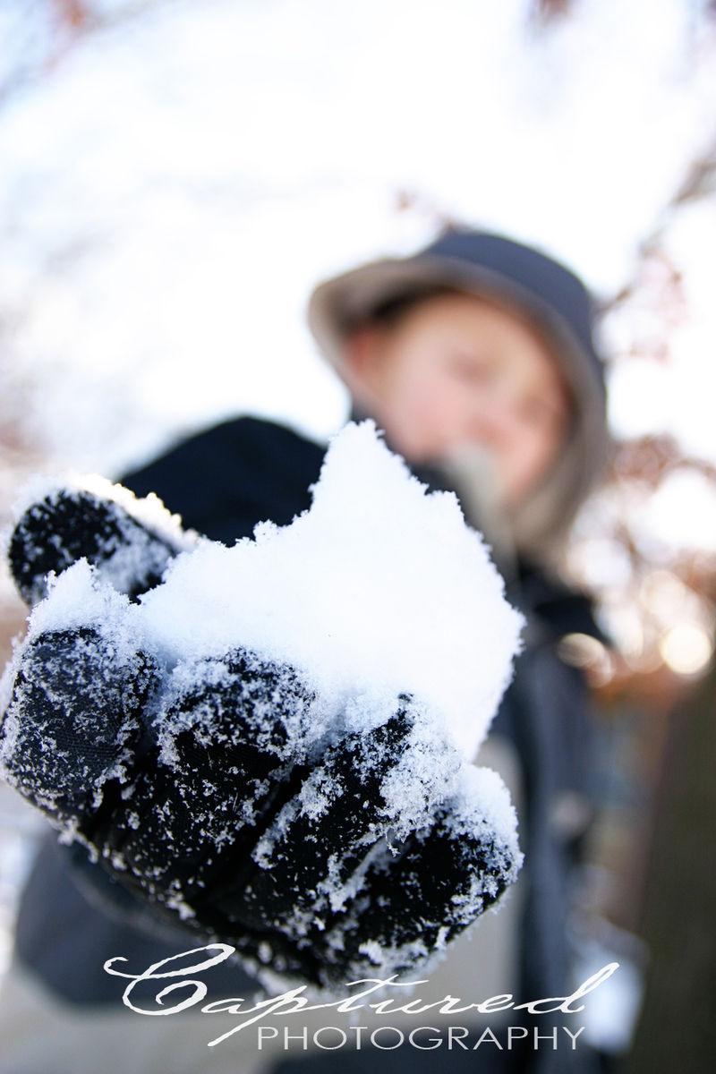 Snowblog